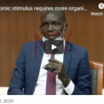 Economic stimulus requires more organised approach