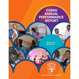 CSBAG Annual Performance Report 2017